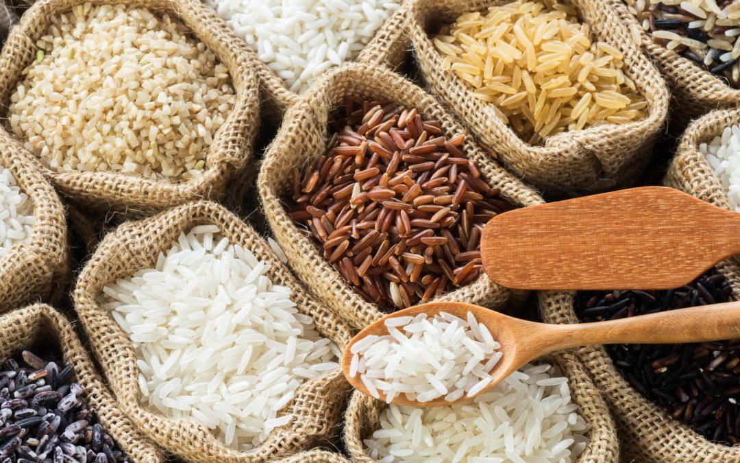 Italia, leader europeo per vendita di riso all'estero