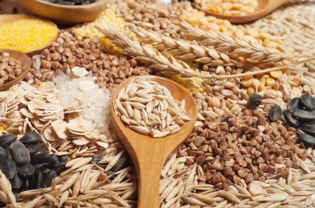 Grano e cereali cresce export a quota 258 milioni